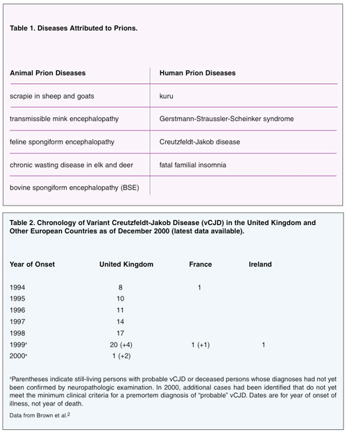 mad cow disease past present essay What is a prion the molecular are responsible for 'mad cow' disease model of both variants and have published papers describing the structure of prion.